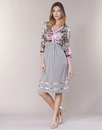 Kleidung Damen Kurze Kleider Cream ZAIROCE Grau