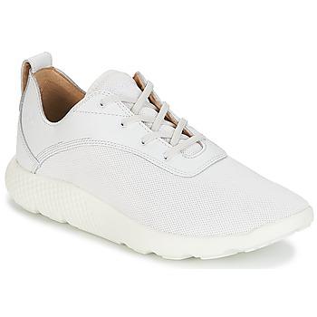 Schuhe Herren Sneaker Low Timberland FLYROAM Weiss