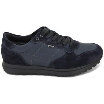 Schuhe Herren Wassersportschuhe IgI&CO Zapatillas Deportivas GTX 8741 Blau