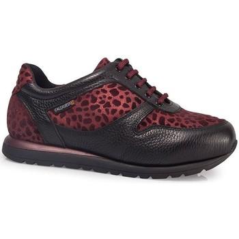 Schuhe Damen Sneaker Low Calzamedi ORO BORDEAUX SPORT SCHUHE W BORDEAUX