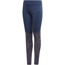Kleidung Mädchen Leggings adidas Performance Trainingstight blue