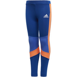 Kleidung Mädchen Leggings adidas Performance Trainingstight Blau / Orange