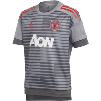 Kleidung Kinder T-Shirts adidas Performance Manchester United Home Pre-Match Shirt grey