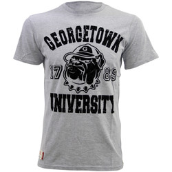 Kleidung Herren T-Shirts American Freshman JUNIPER TEE Herren T-Shirt Georgetown University Neu grisape01096