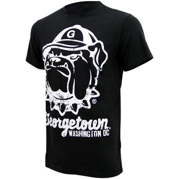 Kleidung Herren T-Shirts American Freshman JUNIPER TEE Herren T-Shirt Georgetown University Neu noir