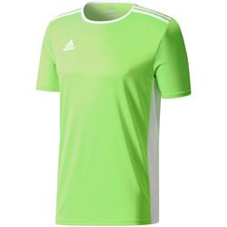 Kleidung Herren T-Shirts adidas Originals Entrada 18 Jersey Grün