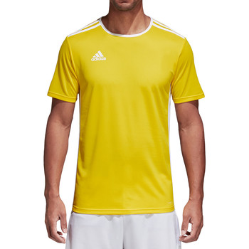 Kleidung Herren T-Shirts adidas Originals Entrada 18 Jersey Gelb