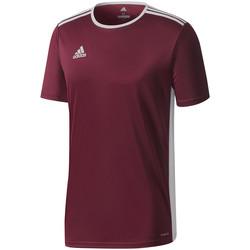 Kleidung Herren T-Shirts adidas Originals Entrada 18 Jersey Rot