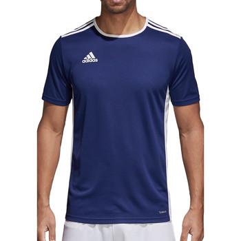 Kleidung Herren T-Shirts adidas Originals Entrada 18 Jersey Blau