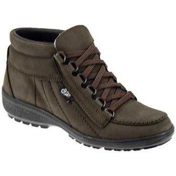 Schuhe Damen Wanderschuhe Alisport ART 115 bergschuhe Multicolor