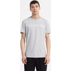 Kleidung Herren T-Shirts Calvin Klein Jeans J30J306458 TREASURE T-SHIRT Harren LIGHT GREY LIGHT GREY