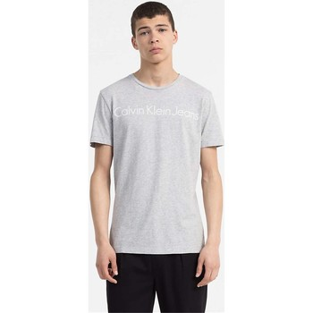 Kleidung Herren T-Shirts Calvin Klein Jeans J30J306458 TREASURE T-SHIRT Herren LIGHT GREY LIGHT GREY