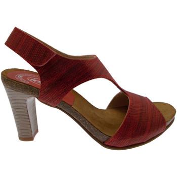 Schuhe Damen Sandalen / Sandaletten Calzaturificio Loren LOJ0833ne nero