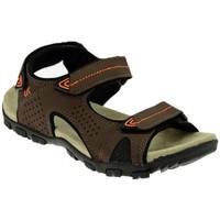 Schuhe Herren Sandalen / Sandaletten Lumberjack PALMER sandale Multicolor