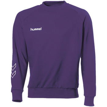 Kleidung Sweatshirts Hummel Sweat Corporate Coton