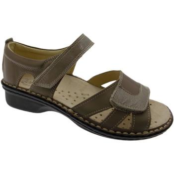 Schuhe Damen Sandalen / Sandaletten Calzaturificio Loren LOM2524to tortora
