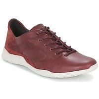 Schuhe Damen Sneaker Low TBS JARDINS Braun