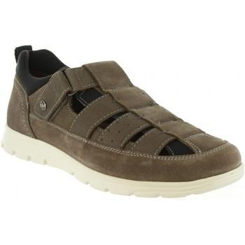 Schuhe Herren Sandalen / Sandaletten Panama Jack DONOVAN C4 Gris