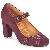 Schuhe Damen Pumps Chie Mihara KALEI Bordeaux