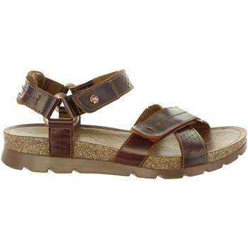 Schuhe Herren Sandalen / Sandaletten Panama Jack SAMBO EXPLORER C4 Marrón