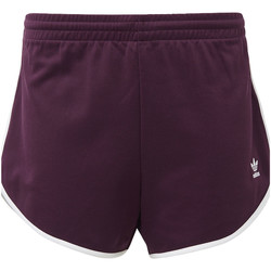 Kleidung Damen Shorts / Bermudas adidas Originals AA-42 Shorts red
