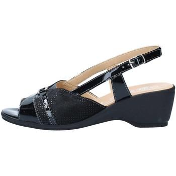 Schuhe Damen Sandalen / Sandaletten Cinzia Soft IO570-VS Sandalen Frau Black Black
