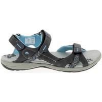 Schuhe Damen Sandalen / Sandaletten Elementerre Curcuma Gris Grau
