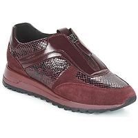 Schuhe Damen Sneaker Low Geox D TABELYA Bordeaux
