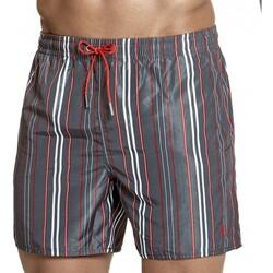 Kleidung Herren Shorts / Bermudas Impetus 7402E57 E66 Grau