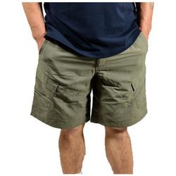 Kleidung Herren Shorts / Bermudas The North Face TOCF729ZGshorts