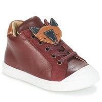 Schuhe Jungen Boots André RENARDEAU Bordeaux