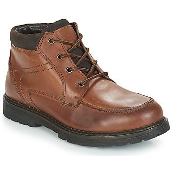 Schuhe Herren Boots André AREZZO Braun