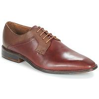 Schuhe Herren Derby-Schuhe André CRYO Braun