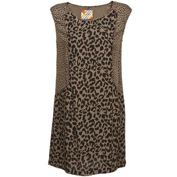 Kleidung Damen Kurze Kleider Chipie RITA Beige