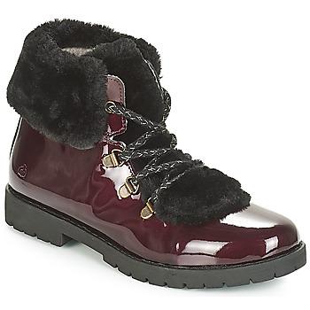 Schuhe Mädchen Boots Citrouille et Compagnie JUTTER Bordeaux