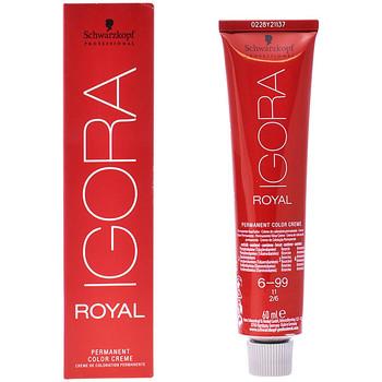 Beauty Accessoires Haare Schwarzkopf Igora Royal 6-99  60 ml