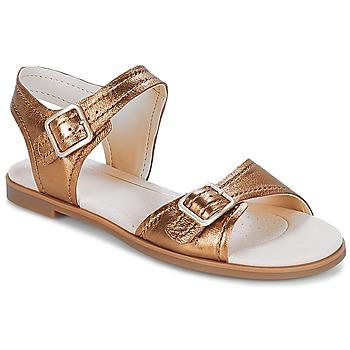 Schuhe Damen Sandalen / Sandaletten Clarks Bay Primrose Bronze / Metallic