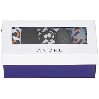 Accessoires Damen Socken & Strümpfe André LEOSOCKS Multifarben