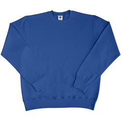 Kleidung Herren Sweatshirts Sg SG20 Königsblau