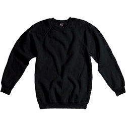 Kleidung Herren Sweatshirts Sg Raglan Schwarz
