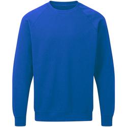 Kleidung Herren Sweatshirts Sg Raglan Königsblau