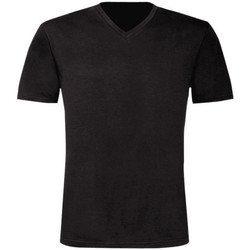 Kleidung Herren T-Shirts B And C TU006 schwarz