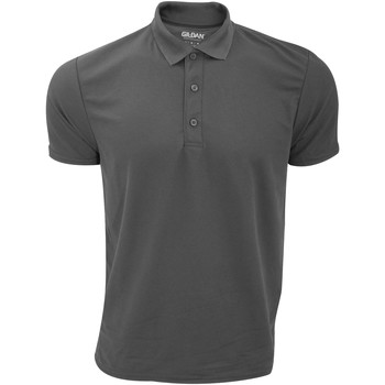 Kleidung Herren Polohemden Gildan 43800 Graphit