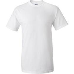 Kleidung Herren T-Shirts Gildan Ultra Weiß
