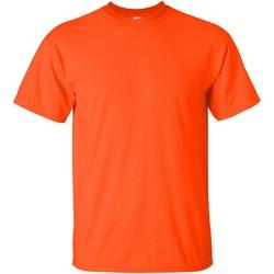 Kleidung Herren T-Shirts Gildan Ultra Orange