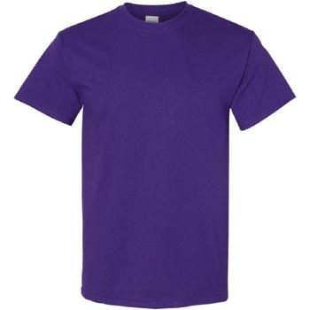 Kleidung Herren T-Shirts Gildan Heavy Purpur
