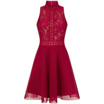 Kleidung Damen Kurze Kleider Little Mistress  Beere