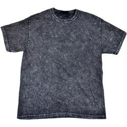 Kleidung Herren T-Shirts Colortone Mineral Schwarz