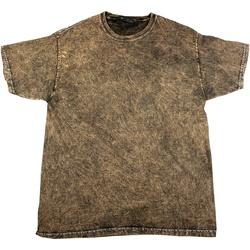 Kleidung Herren T-Shirts Colortone Mineral Braun