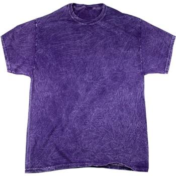 Kleidung Herren T-Shirts Colortone Mineral Violett